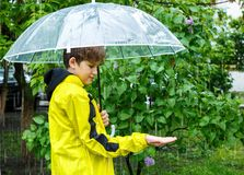 Boy in yellow raincoat holds transparent Umbrella during the rain. Rainy weather at spring. Summer royalty free stock image