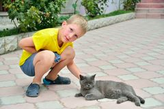 The boy in the yellow shirt in the yard on the street petting a stock image