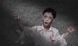 Boy in zombie make up for Halloween Royalty Free Stock Photo
