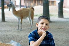 Boy at the zoo Royalty Free Stock Photography
