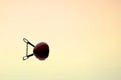 Boya roja Foto de archivo libre de regalías