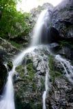 Boyana-Wasserfall Stockbild