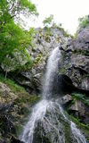 Boyana waterfall Royalty Free Stock Photography