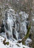 Boyana Waterfalls Stock Photography