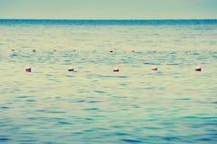 Boyas del océano Imágenes de archivo libres de regalías