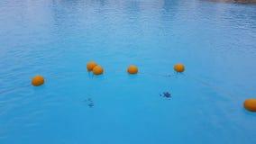 Boyas en la piscina almacen de metraje de vídeo