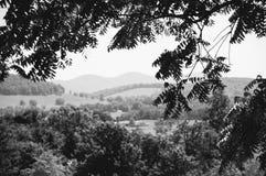Boyce, la Virginia - in bianco e nero fotografie stock