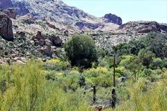 Boyce Thompson Arboretum State Park, superior, Estados Unidos do Arizona Imagem de Stock