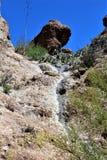 Boyce Thompson Arboretum State Park, superiore, Arizona Stati Uniti immagine stock
