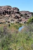 Boyce Thompson Arboretum State Park, Vorgesetzter, Arizona Vereinigte Staaten Stockbild