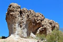 Boyce Thompson Arboretum State Park, Vorgesetzter, Arizona Vereinigte Staaten Stockfoto