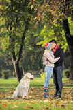 Boyfriend and girlfriend kissing in the park. And a labrador retreiver dog watching them Stock Photos