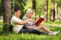 Boyfriend and girlfriend reading a book. A boyfriend and girlfriend reading a book in a city park Skopje, Macedonia stock photography
