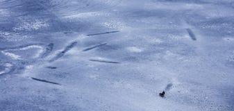 Boyhood in de winter, dag, openlucht stock afbeeldingen