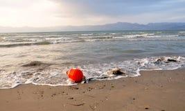Boyko no mar Foto de Stock