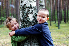 Boys and birch tree. Two brothers with birch tree - kids stock photo