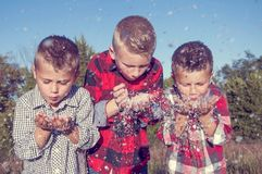 Boys blowing snow royalty free stock photography