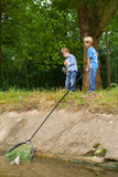 Boys catching fish royalty free stock images