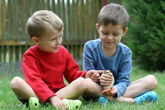 Boys and chicken Royalty Free Stock Image