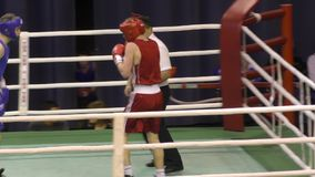Boys compete in boxing stock video