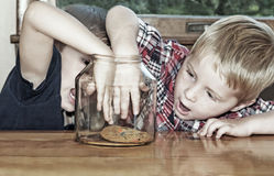 Boys compete for last cookie Stock Photos