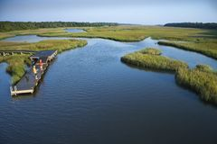 Boys on dock in marsh. Royalty Free Stock Photo