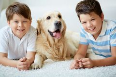 Boys with dog Stock Images