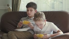 Boys are eating corn. Two cute boys sits on the sofa and have a lunch. The boys are eating a corn. Two brothers eating a vegetable at home on the sofa. Cute stock video