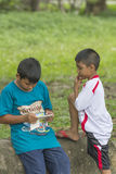 Boys enjoy playing games on the smart phone Royalty Free Stock Photo