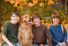 Boys in the Fall Leaves. With the Dog Royalty Free Stock Photo