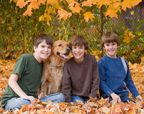 Boys in the Fall Leaves. With the Dog Stock Images