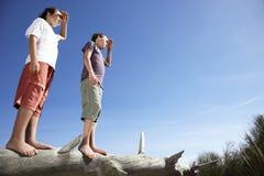 Boys On Fallen Tree Shielding Eyes Royalty Free Stock Photography