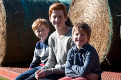 Boys on a farm Royalty Free Stock Photography
