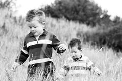 Boys in field. Two brothers playing in a long grass field Stock Images