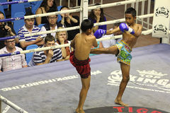 Boys fighting muay-thai. Boys competing at Bangla Boxing Stadium in Patong, Phuket, Thailand Royalty Free Stock Image