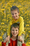 Boys in Flower Field Stock Image