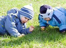 Boys and flowers royalty free stock photo