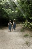 Boys on a Garden Path. Two little boys exploring a path with light beams shining in Stock Photography