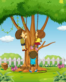 Boys and girl climbing up the tree Stock Photography