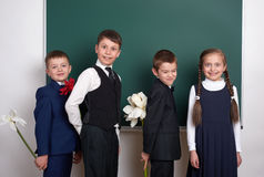 Boys giving girl flowers, elementary school child near blank chalkboard background, dressed in classic black suit, group pupil, ed Stock Photography
