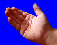 Boys Hand on Blue. Isolated photo of a young boys hand on a blue background. Palm out as if giving, receiving, explaining or sharing Royalty Free Stock Image