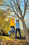 Boys hanging from branch of tree Stock Images