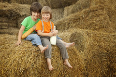 Boys on a haystack with bread and milk Stock Photos