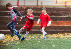 Boys kicking football. On the sports field Stock Images