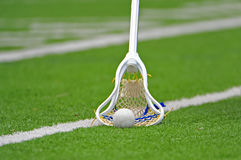 Boys Lacrosse stick. Boys lacrosse player scooping up a loose ball Royalty Free Stock Image