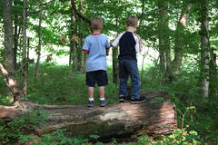 Boys on a Log. Two boys standing on a log in a forest. Shot with a Canon 20D Stock Photography