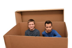 Boys in moving box. Boys sitting in an empty moving box royalty free stock images