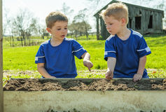 Boys planting seeds in container garden Royalty Free Stock Photography