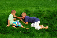 Boys play on the grass Royalty Free Stock Images