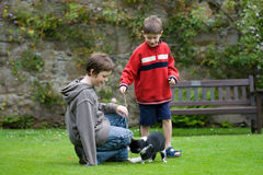 Boys playing with a cat Royalty Free Stock Image